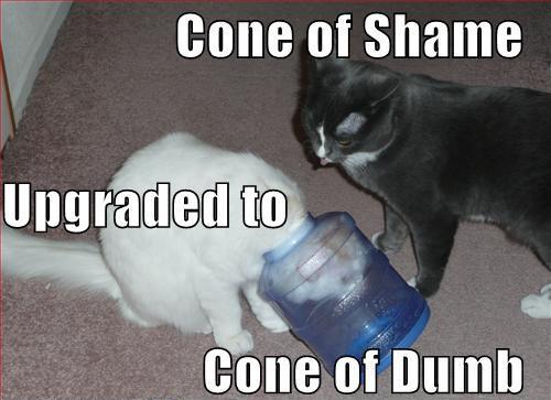 Cone-of-Dumb-Upgrade.jpg